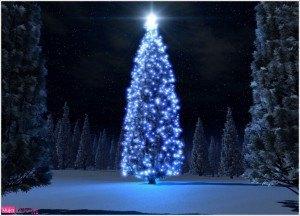 tajeta navideña, postal árbol de navidad, foto de invierno, felicitación de navidad, feliz navidad, año nuevo 20156 marry christmas tree