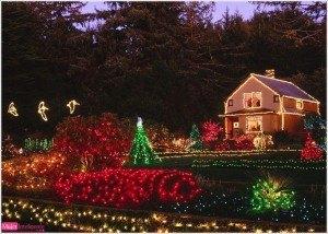 Postal navidad, paisaje navideño, foto invierno, año nuevo, felicitación navidad, imagen luces navidad