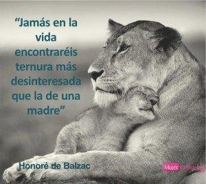 foto amor de madre, animales, leona y su cria
