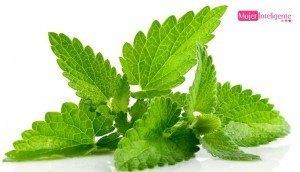 Remedios naturales de belleza