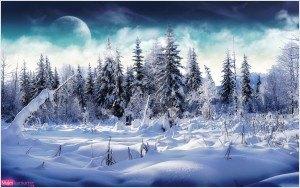Postal navidad, paisaje navideño, foto invierno, año nuevo, felicitación navidad, nieve